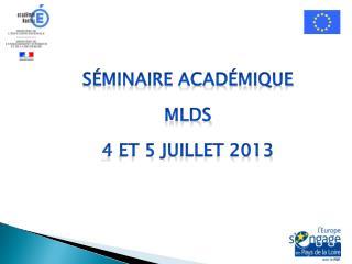 Séminaire Académique  MLDS 4 et 5 juillet 2013