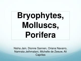 Bryophytes,  Molluscs ,  Porifera