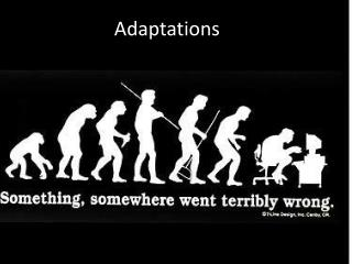 Adaptations