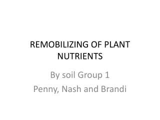 REMOBILIZING  OF PLANT  NUTRIENTS
