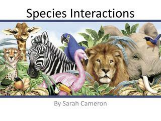 Species Interactions