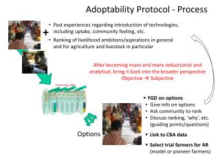 FGD on options Give info on options Ask community to rank