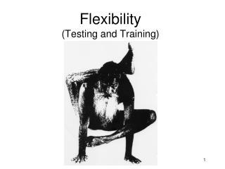 Flexibility  (Testing and Training)