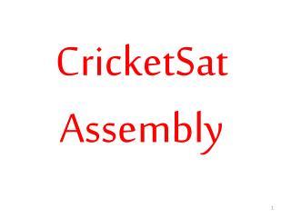 CricketSat Assembly