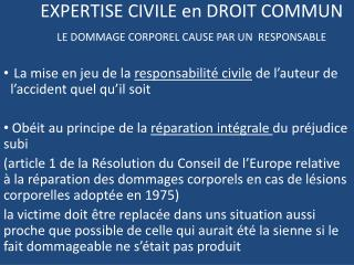 EXPERTISE CIVILE en DROIT COMMUN LE DOMMAGE CORPOREL CAUSE PAR UN  RESPONSABLE