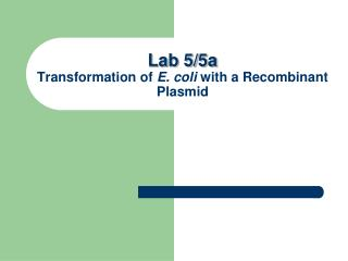 Lab 5/5a  Transformation of  E. coli  with a Recombinant Plasmid