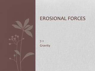 Erosional Forces