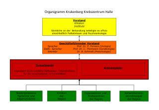 Organigramm Krukenberg Krebszentrum Halle