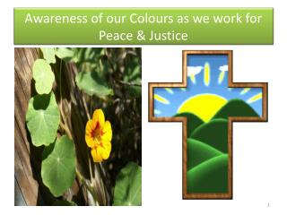 Awareness of our Colours as we work for Peace & Justice