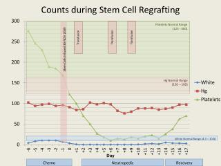 Counts during Stem Cell  Regrafting