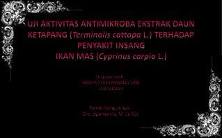 Diajukan oleh  : ANISYA PUTRI MAYANG SARI 2007210021