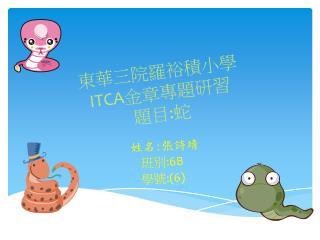 東華三院羅裕積小學 ITCA 金章專題研習 題目 : 蛇