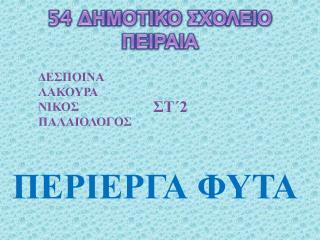 54  ΔΗΜΟΤΙΚΟ ΣΧΟΛΕΙΟ ΠΕΙΡΑΙΑ