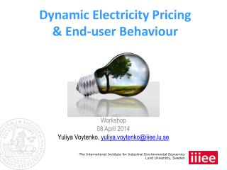 Dynamic Electricity Pricing  & End-user Behaviour