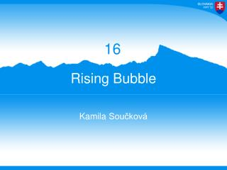 Rising Bubble