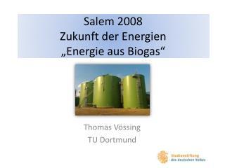 Salem 2008 Zukunft der Energien  Energie aus Biogas