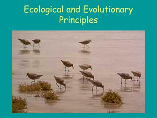 Ecological and Evolutionary Principles