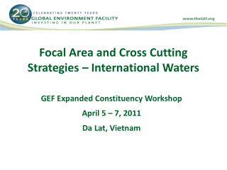 Focal Area and Cross Cutting Strategies – International Waters