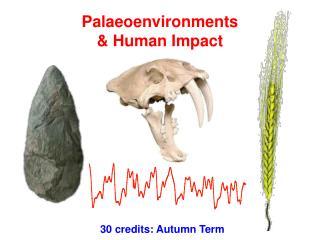 Palaeoenvironments & Human Impact