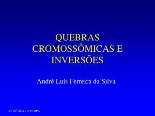 QUEBRAS CROMOSS MICAS E INVERS ES