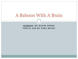 A Baboon With A Brain