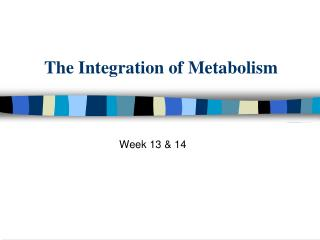The Integration of Metabolism