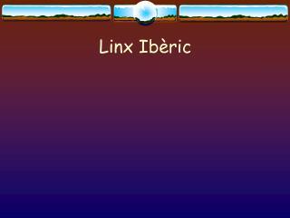 Linx Ib ric