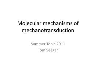 Molecular mechanisms of  mechanotransduction