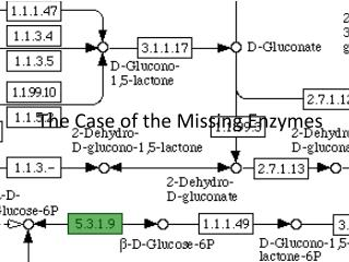 The Case of the Missing Enzymes