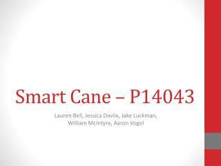 Smart Cane – P14043