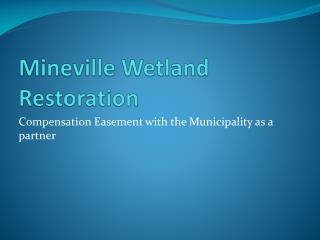 Mineville  Wetland Restoration