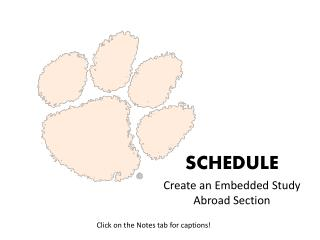 Create an Embedded Study Abroad Section