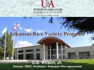 Arkansas Rice Production