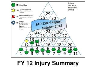 FY 12 Injury Summary