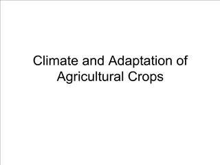 Climate and Adaptation of Agricultural Crops