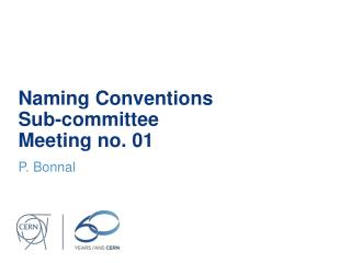 Naming  Conventions Sub - committee Meeting  no. 01