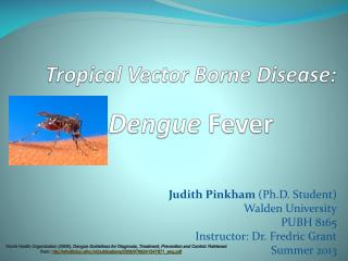 Tropical Vector Borne Disease:  Dengue  Fever