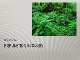 Population Ecology