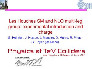 Les Houches SM and NLO multi-leg group: experimental introduction and charge