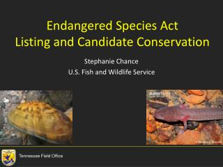Endangered Species Act Listing and Candidate Conservation