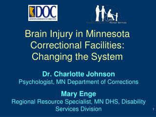 Brain Injury in Minnesota Correctional  Facilities: Changing  the System