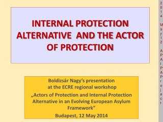 INTERNAL PROTECTION ALTERNATIVE  AND THE ACTOR OF PROTECTION
