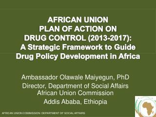 Ambassador Olawale Maiyegun, PhD Director, Department  of Social Affairs African Union Commission