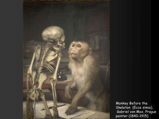 Monkey Before the Skeleton  (Ecce  simia ),   Gabriel von Max, Prague painter (1840-1915)