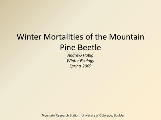 Winter Mortalities of the Mountain Pine Beetle  Andrew Habig Winter Ecology Spring 2009