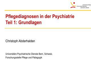 Pflegediagnosen in der Psychiatrie Teil 1: Grundlagen