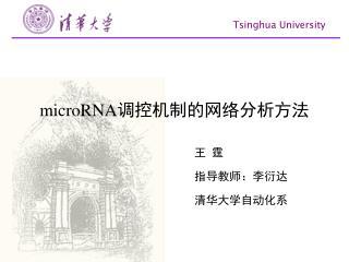 microRNA 调控机制的网络分析方法