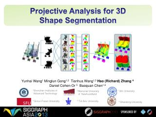 Projective Analysis for 3D  Shape Segmentation