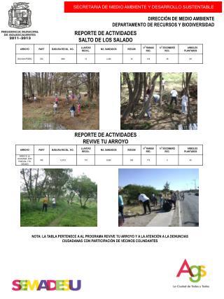 REPORTE DE ACTIVIDADES  SALTO DE LOS SALADO