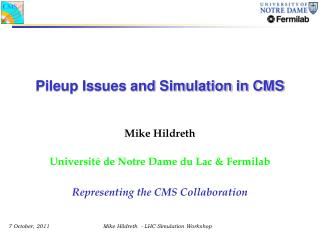Pileup Issues and  Simulation in CMS